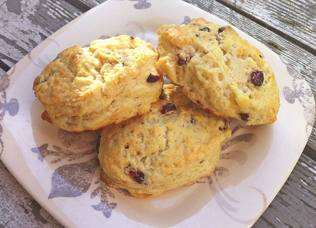 Orange Cranberry Scone and a summer break…