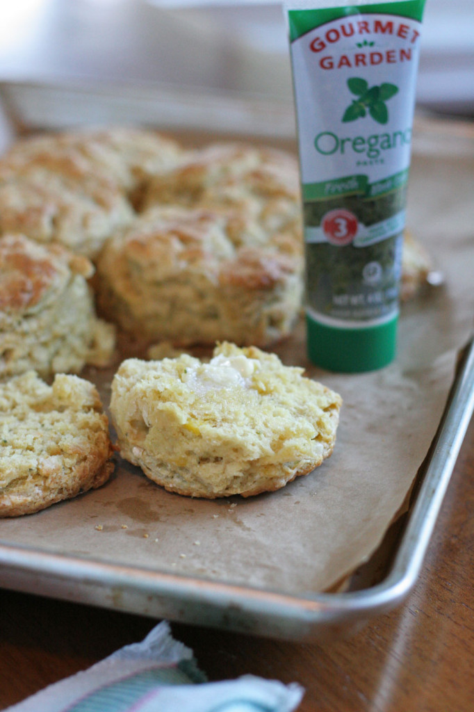 Herb Squash Goat Cheese Biscuits