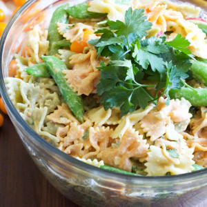 Hummus Dressing Summer Pasta Salad