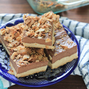 Coconut Dark Chocolate Cheesecake Bars